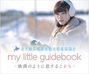 my little guide book